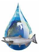 Salmon Creek Water Conservation Program